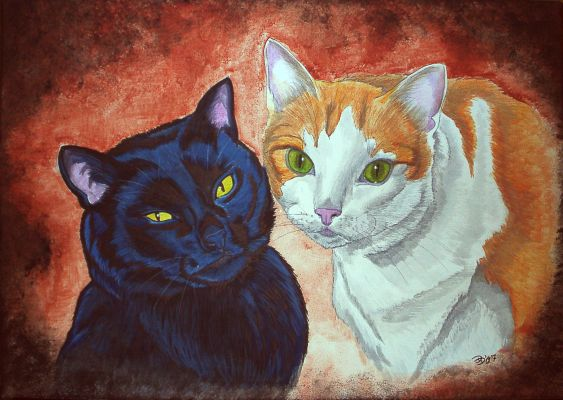 two tomcats